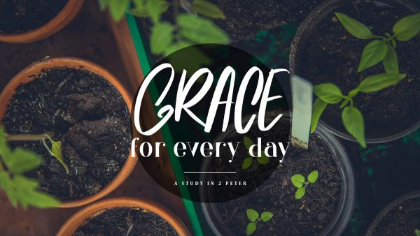 Grace and Peace Multiplied to You Image